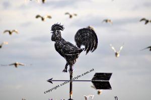 chicken-wind-pointer-iron-malta-www-cottagestyle-com_-mt_.jpg